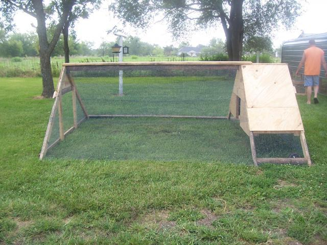 New chicken tractor backyard chickens for Big chicken tractor