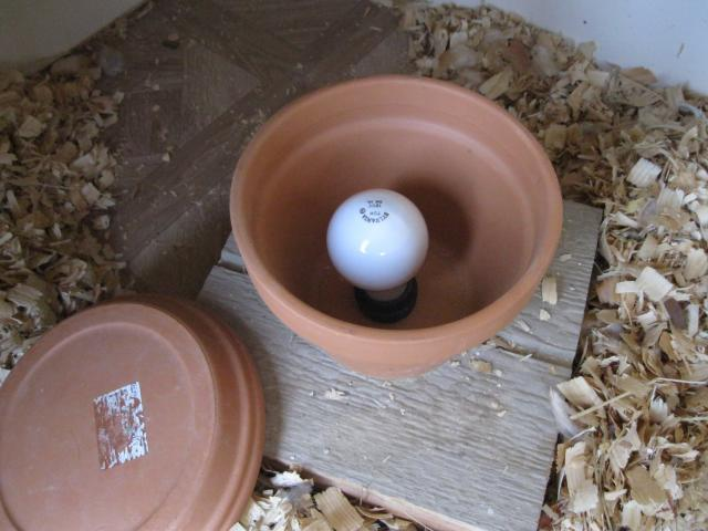 www.backyardchickens.com/forum/uploads/37862_clay_pot_heater_005.jpg