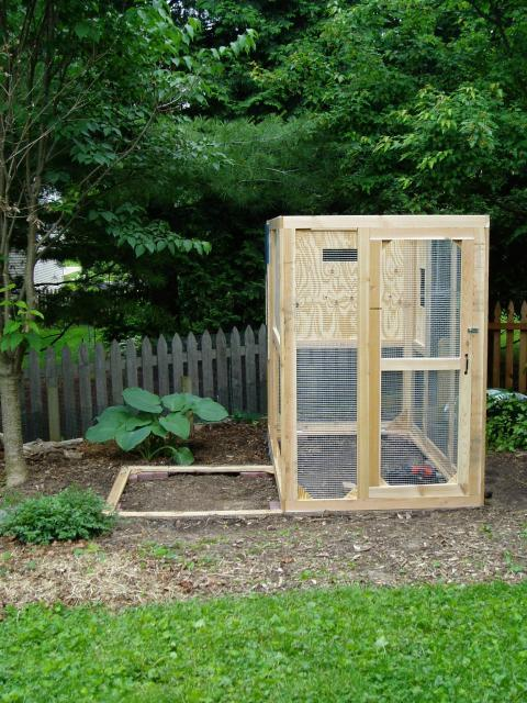 the small space big style city coop backyard chickens community