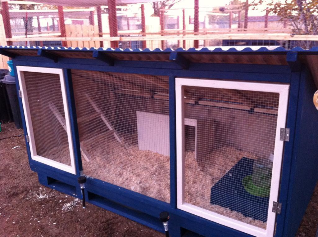 http://www.backyardchickens.com/forum/uploads/38307_img_1544.jpg