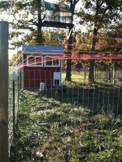 http://www.backyardchickens.com/forum/uploads/38728_hawk_proofing_001.jpg