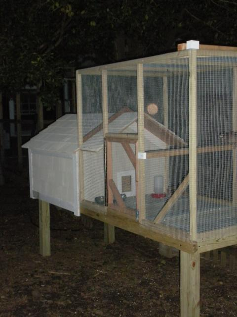 Quail Coop On Pinterest Raising Quail Coops And Chicken