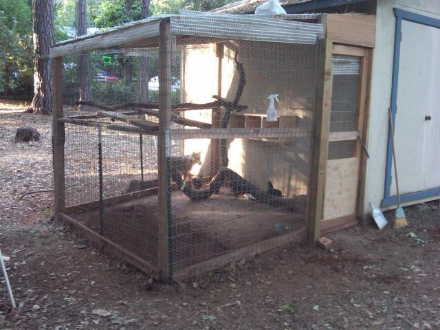 http://www.backyardchickens.com/forum/uploads/39406_my_chicken_coop.jpg