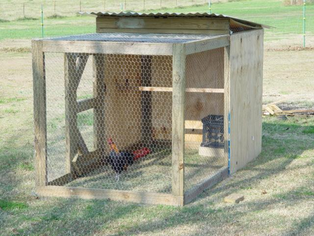 how to build a 4 x 4 x 8 brood pen backyard chickens