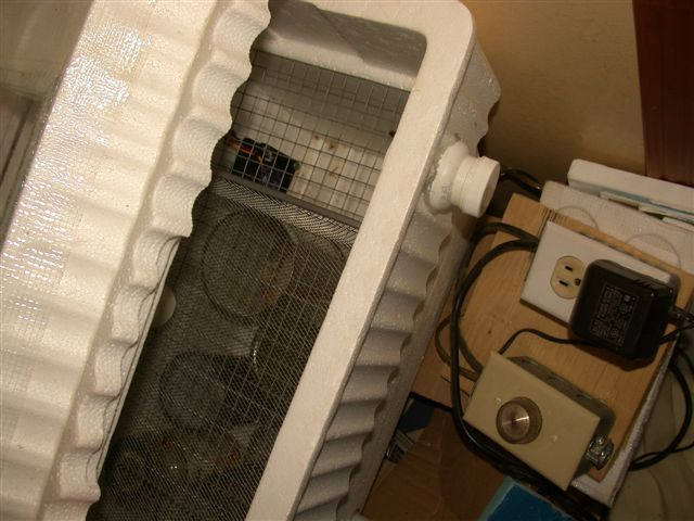 Picture of Incubator with lid off