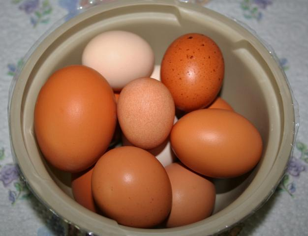 http://www.backyardchickens.com/forum/uploads/41069_tiny_rir_egg.jpg