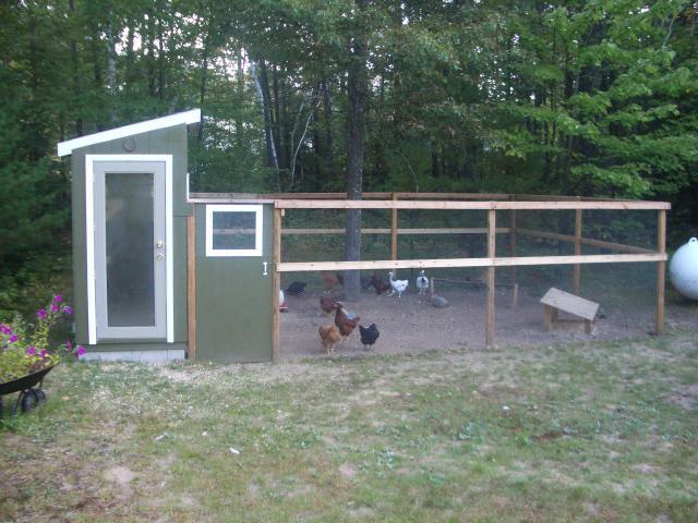 Mlo88jcos chicken coop backyard chickens for Chicken run for 6 chickens