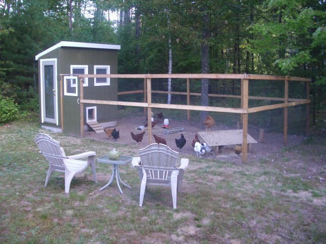 get chicken coop and run for 6 hens lia run