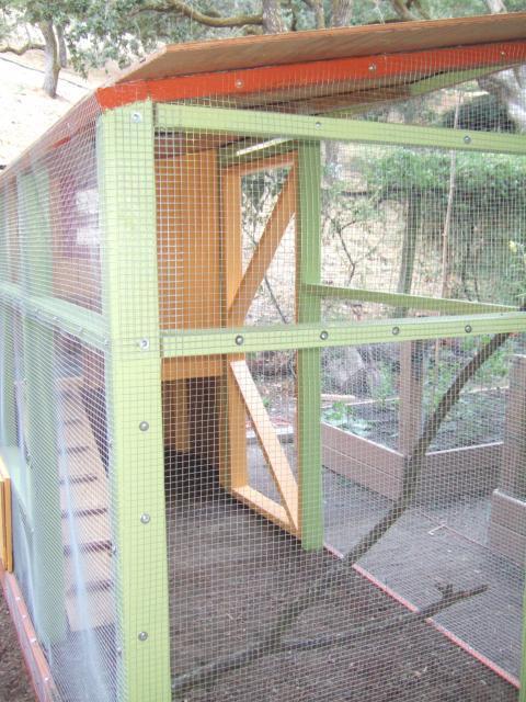 http://www.backyardchickens.com/forum/uploads/41441_dscf5693.jpg
