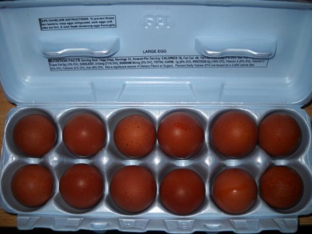 41488_marans_eggs_800x600.jpg