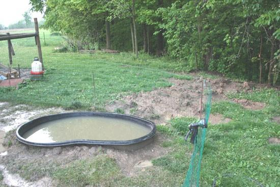 New Duck Pond Enclosure Pics Backyard Chickens