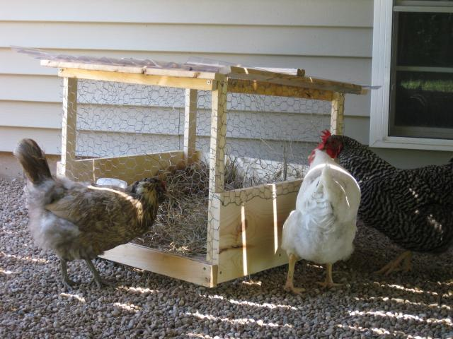 http://www.backyardchickens.com/forum/uploads/43104_7-3-10_broody_pen_6.jpg