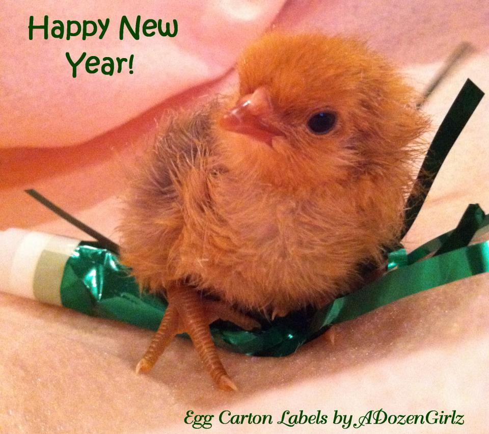 http://www.backyardchickens.com/forum/uploads/43104_happy_new_year_2012.jpg