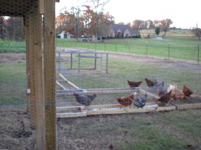 http://www.backyardchickens.com/forum/uploads/43937_chicken_pen_011.jpg