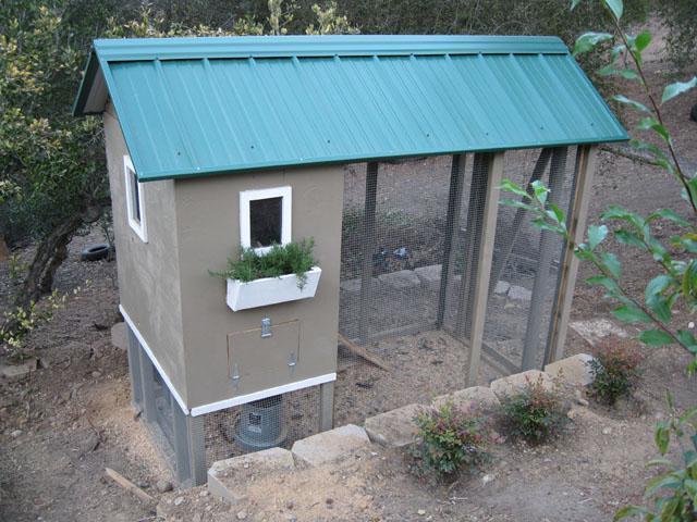casefarms 39 s chicken coop backyard chickens community