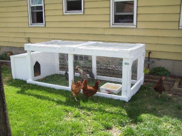 duck enclosure on pinterest duck coop duck pens and