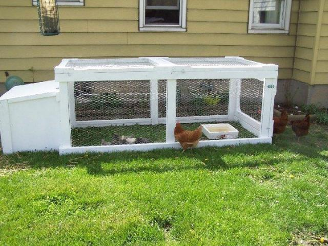 http://www.backyardchickens.com/forum/uploads/4435_duckpen2.jpg