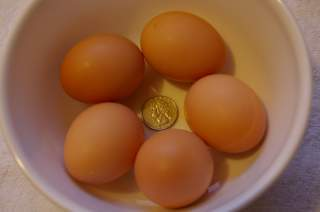 http://www.backyardchickens.com/forum/uploads/4439_langshan_eggs.jpg