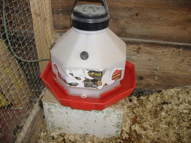 A 60 watt incandescent lightbulb under a flower pot keeps my coop warm and the water liquifiedso far!