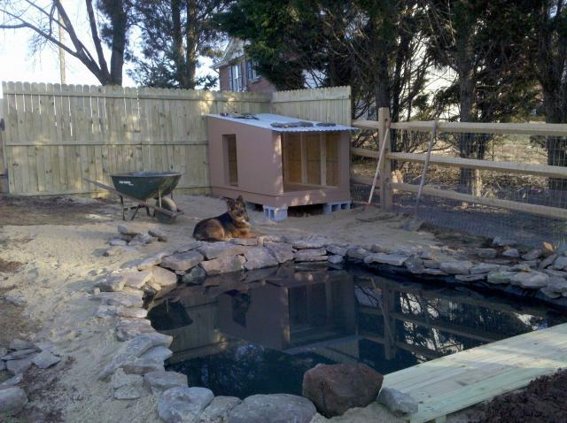 Wademd 39 S Chicken Coop Backyard Chickens Community