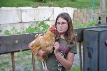http://www.backyardchickens.com/forum/uploads/46547_my_miss_floppy2.jpg