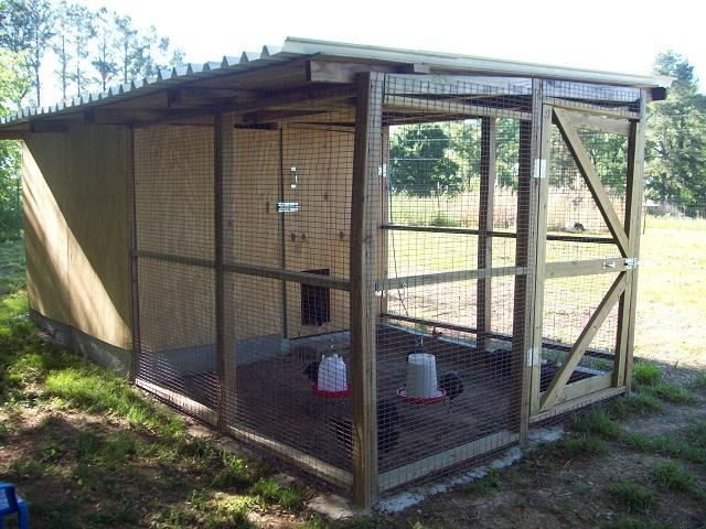 http://www.backyardchickens.com/forum/uploads/47708_094.jpg