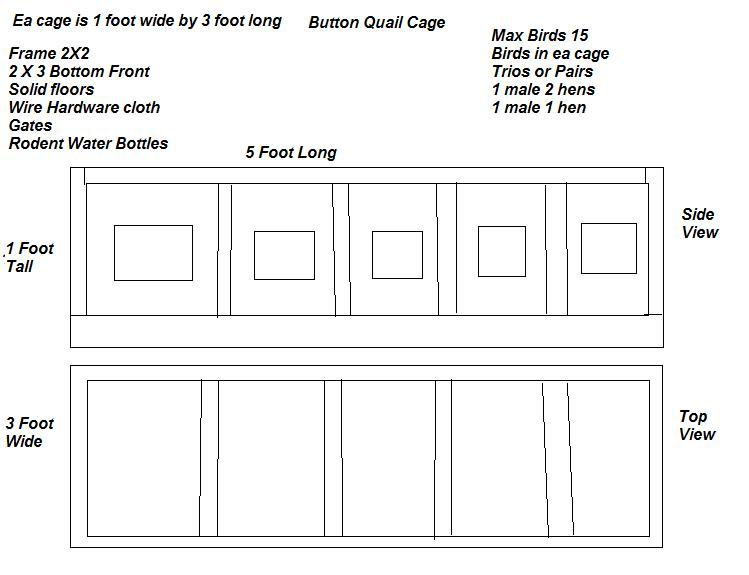 jpeg  Quail Cage Plans  Quail Housing Plans