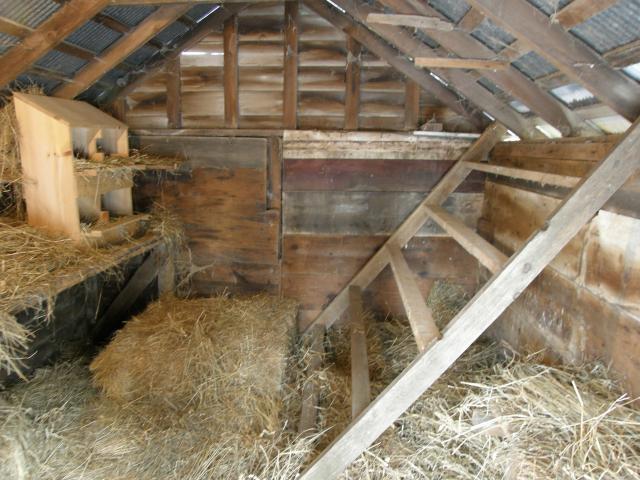 Chicken coop roosts - photo#17