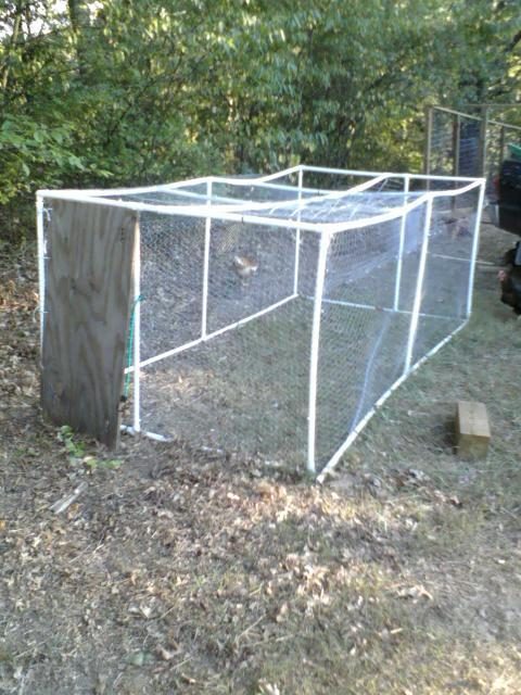 Building the superrun backyard chickens community for Pvc chicken tractor plans