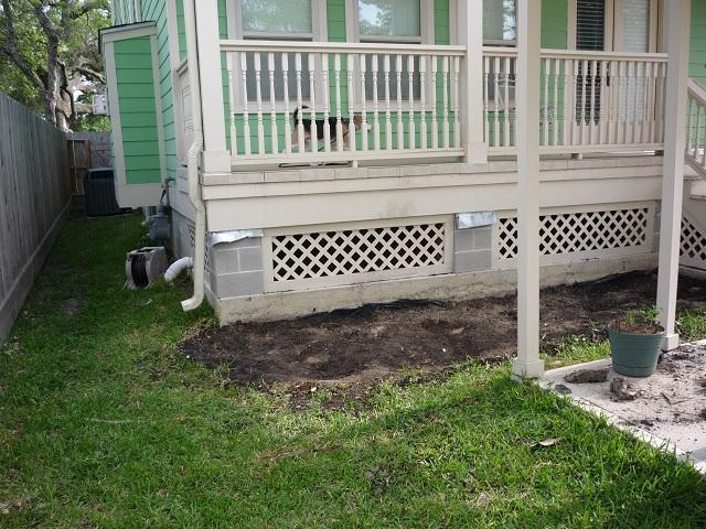 http://www.backyardchickens.com/forum/uploads/54047_p1000612x.jpg