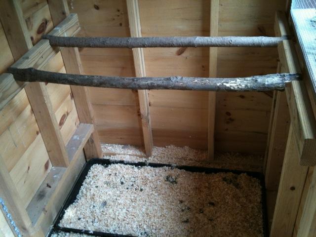 Chicken coop roosts - photo#21