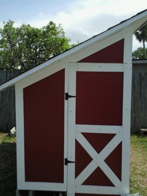 54234_coop_door_with_paint_and_trim.jpg