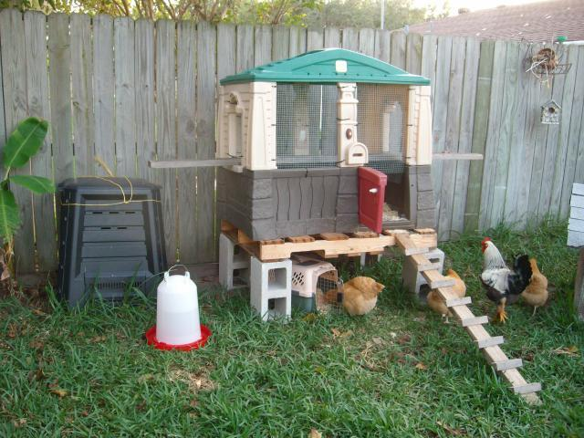 chicken coop electric fence: 2016