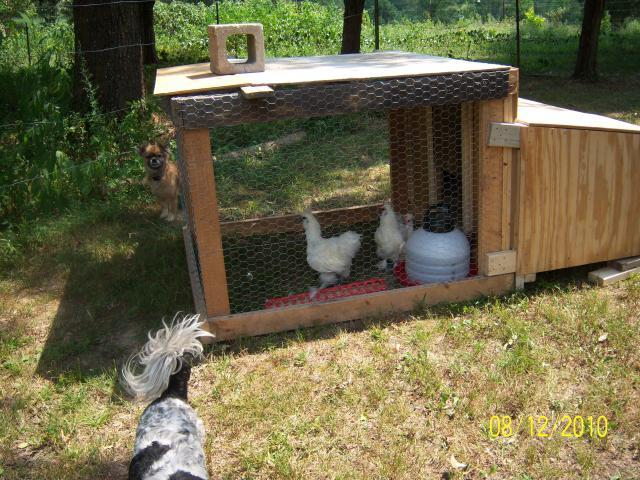 http://www.backyardchickens.com/forum/uploads/56682_100_1489_unfinished_chicken_tractor_one_2.jpg