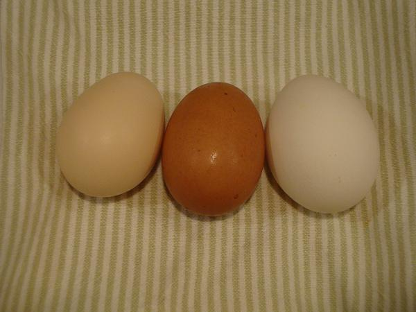 http://www.backyardchickens.com/forum/uploads/57188_egg_colors.jpg