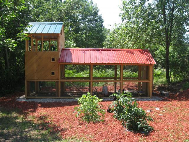 Modern chicken coop backyard chickens community for Modern chicken coop