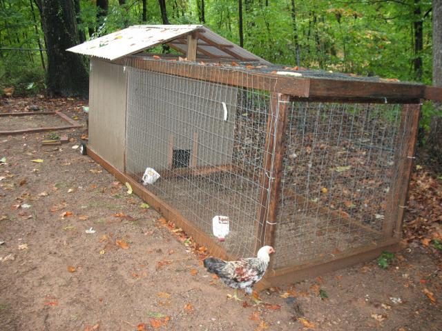 Chicken co op and run for sale memes for Homemade chicken coops for sale