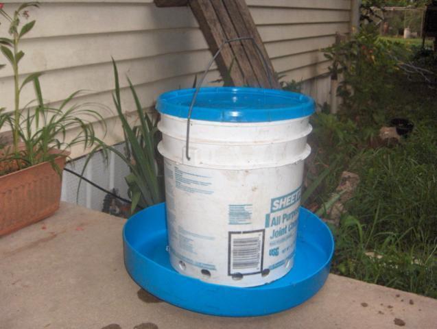 Easyfree feeder all materials recycled backyard for Diy chicken feeder light