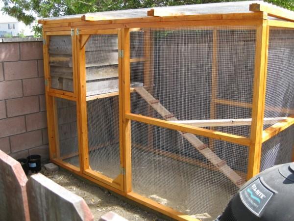 new chicken/pigeon coop