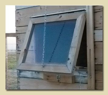 great chicken coop with build a window