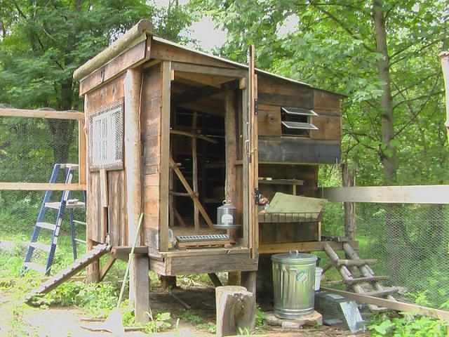 motoclown 39 s chicken coop backyard chickens community