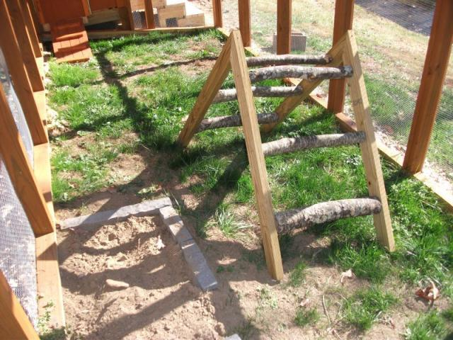 Backyard Jungle Gym Diy : Jungle Gym Play area