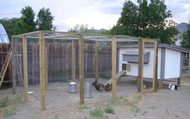 Need some cheep chicken coop plans for Chicken run plans