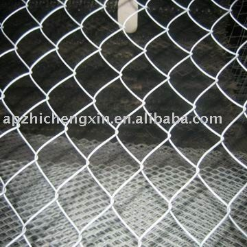 http://www.backyardchickens.com/forum/uploads/61023_chicken_wire_fence.jpg