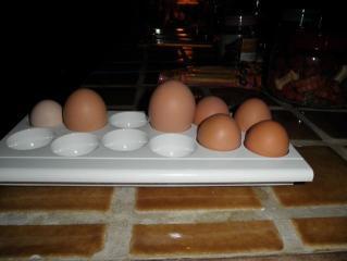 http://www.backyardchickens.com/forum/uploads/62617_pa150005.jpg