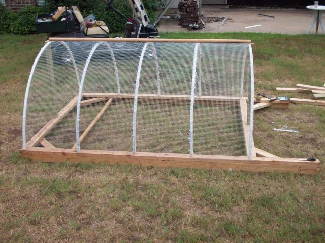 Build Pvc Chicken Tractor : Why i hope to never again build a pvc run or tractor pics