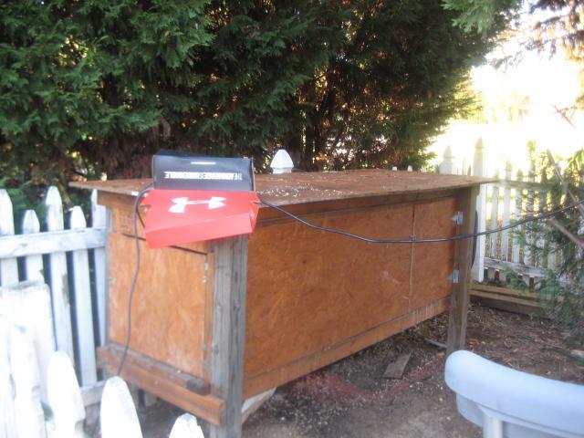 http://www.backyardchickens.com/forum/uploads/63214_quail_234.jpg