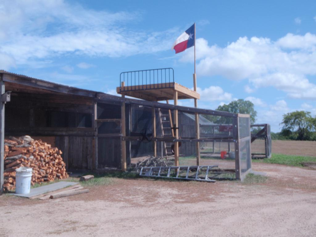 http://www.backyardchickens.com/forum/uploads/63768_texas_flag_006.jpg