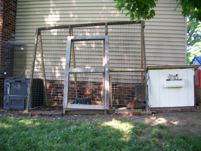 http://www.backyardchickens.com/forum/uploads/63900_100_0373.jpg
