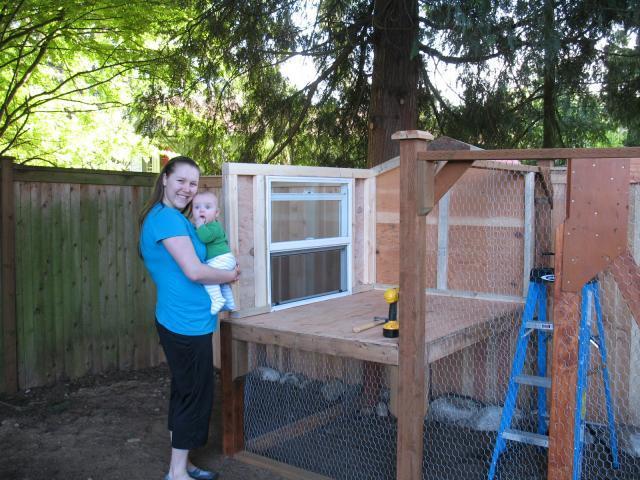Lynnwood living backyard chickens community - Craigslist little rock farm and garden ...